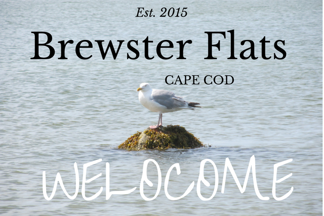 Welcome Brewster Cottage Rental